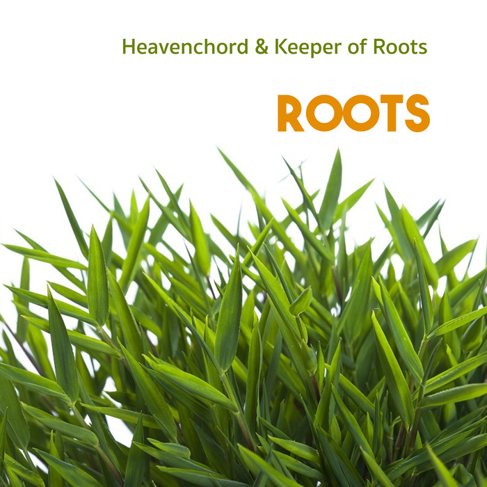 HEAVENCHORD feat KEEPER OF ROOTS - Roots