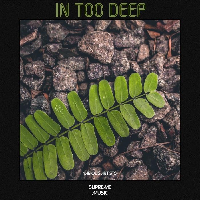 VARIOUS - In Too Deep