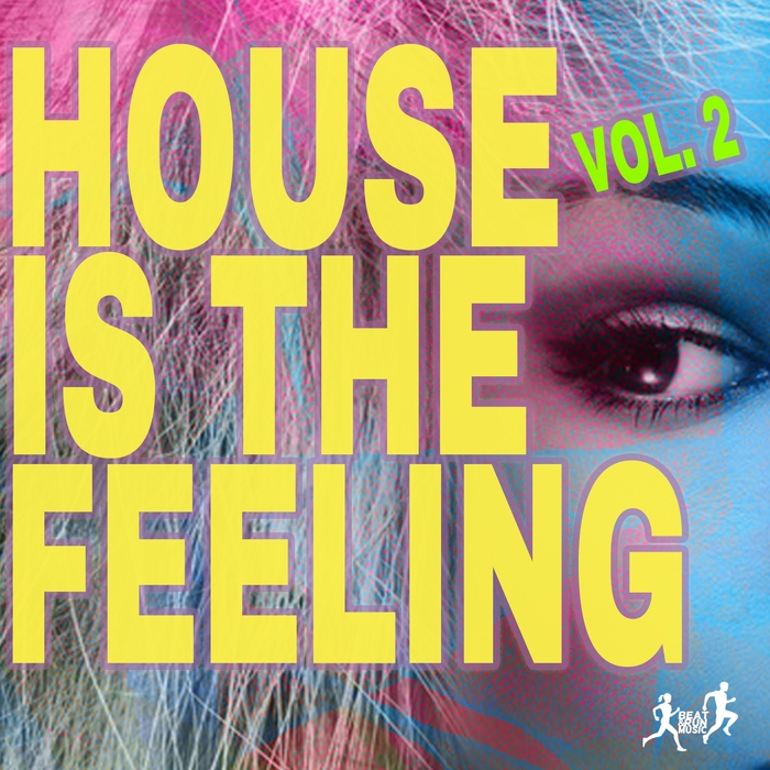 ASELY FRANKIN/JASON RIVAS/NU DISCO BITCHES/ORGANIC NOISE FROM IBIZA/LAYLA MYSTIC/FUTURE 3000/SUPERSONIC LIZARDS - House Is The Feeling Vol 2