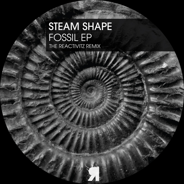 STEAM SHAPE - Fossil EP