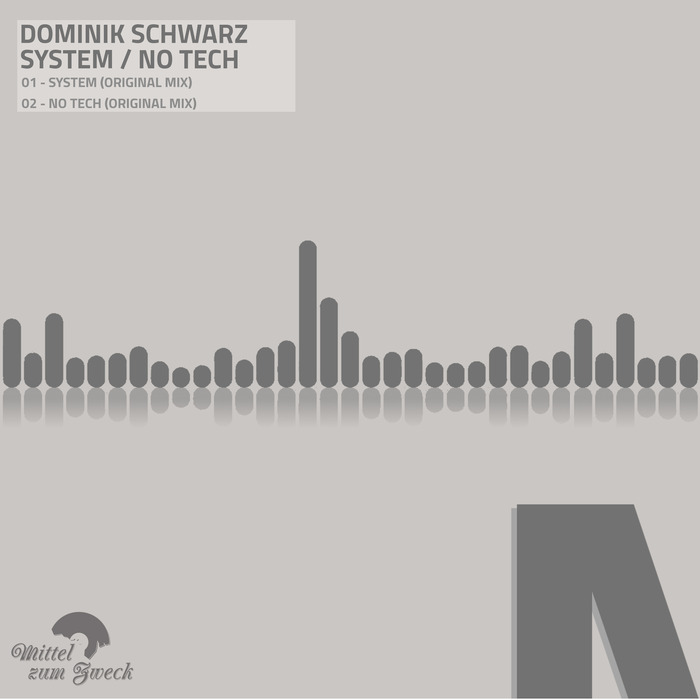 DOMINIK SCHWARZ - System