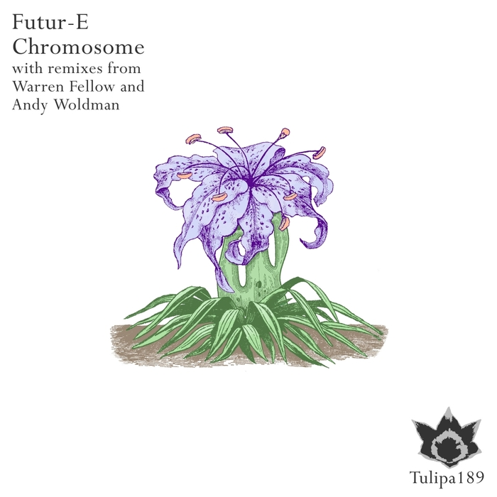 FUTUR-E - Chromosome