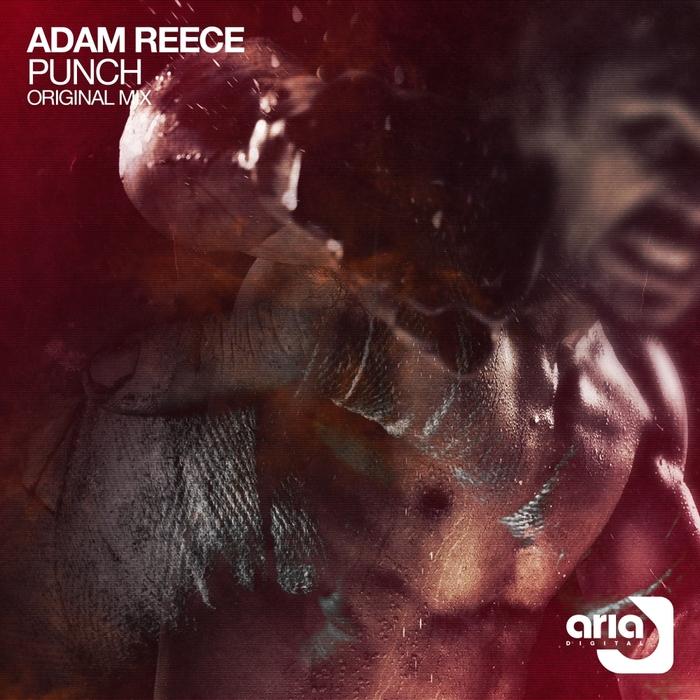 ADAM REECE - Punch