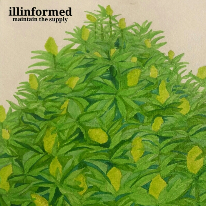 ILLINFORMED - Maintain The Supply