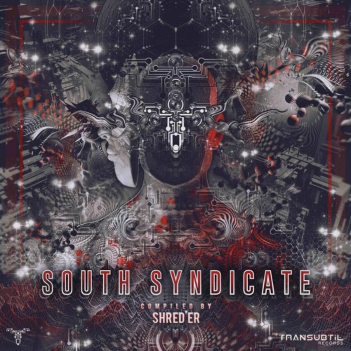 VARIOUS - South Syndicate