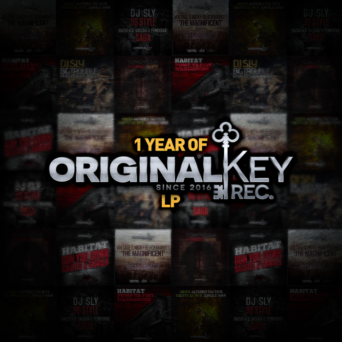VARIOUS - 1 Year Of Original Key Records