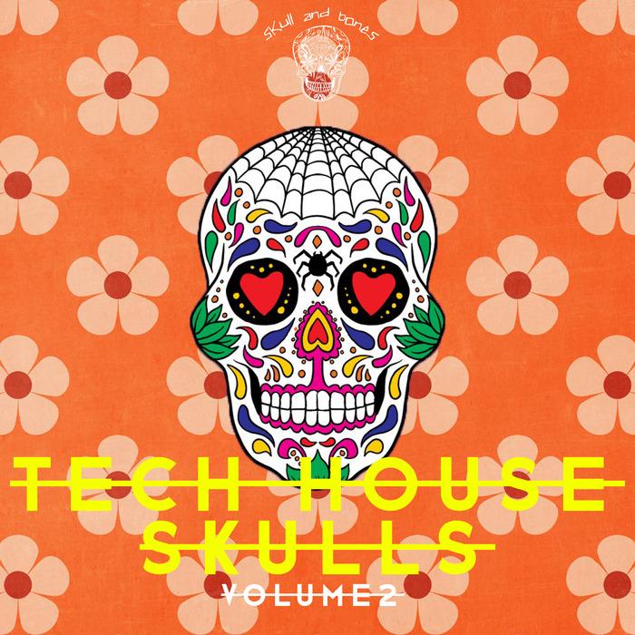 VARIOUS - Tech House Skulls Vol 2