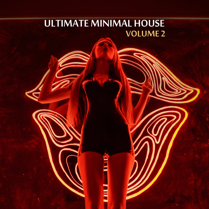 VARIOUS - Ultimate Minimal House Vol 2