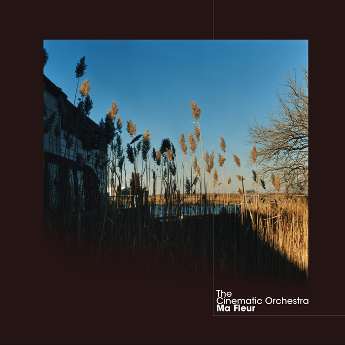 THE CINEMATIC ORCHESTRA - Flowers