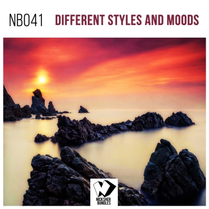VARIOUS - Different Styles & Moods