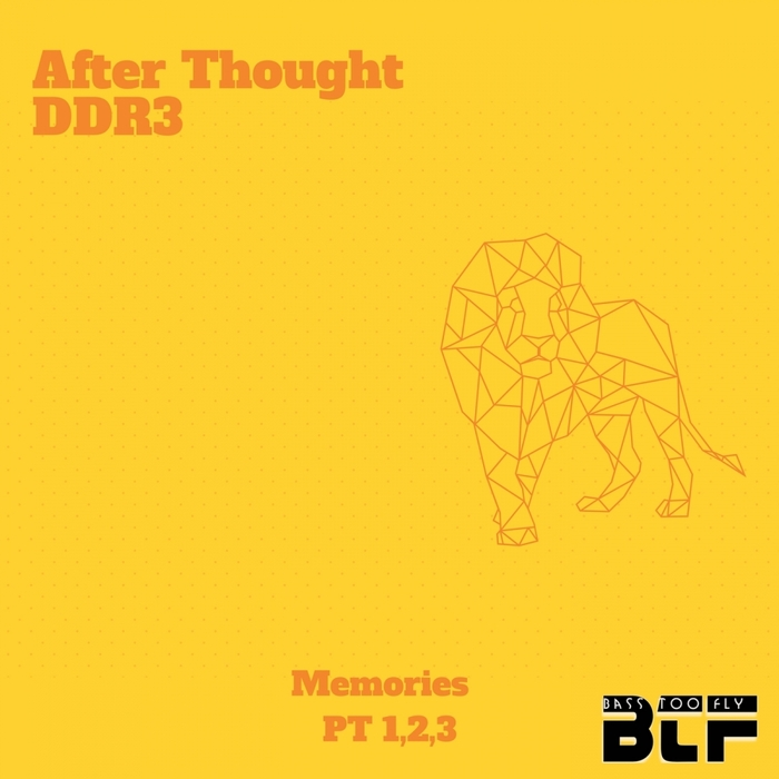 DJ TINY M - After Thought DDR3