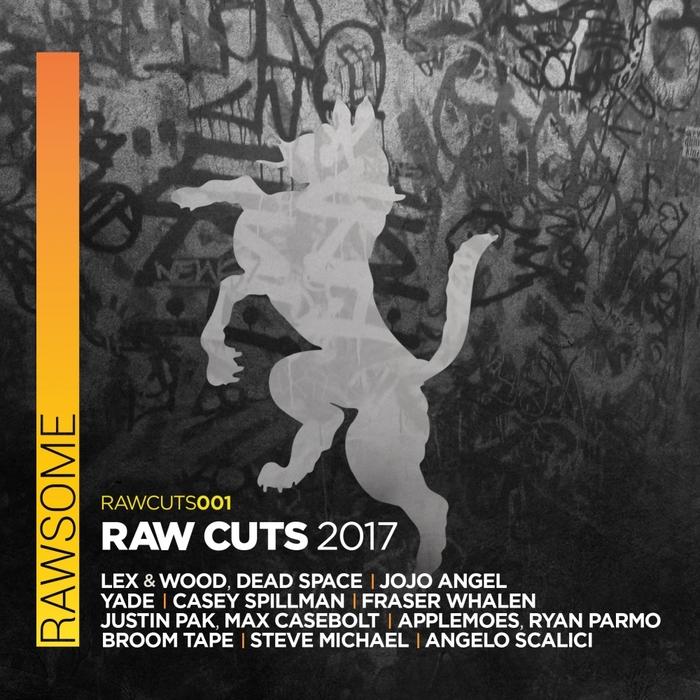 VARIOUS - Raw Cuts 2017