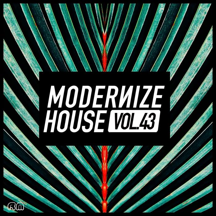 VARIOUS - Modernize House Vol 43
