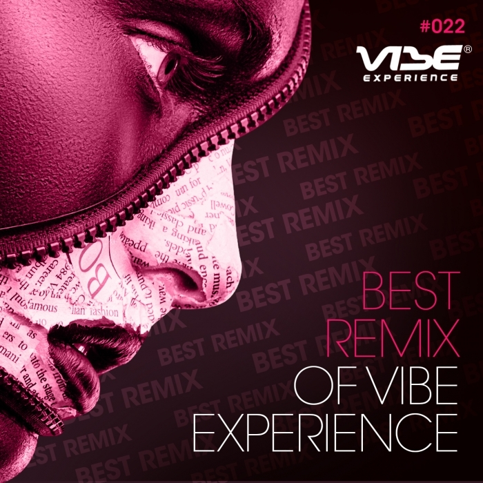 VARIOUS - Best Remix Of Vibe Experience
