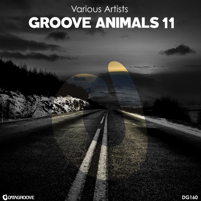 VARIOUS - Groove Animals 11