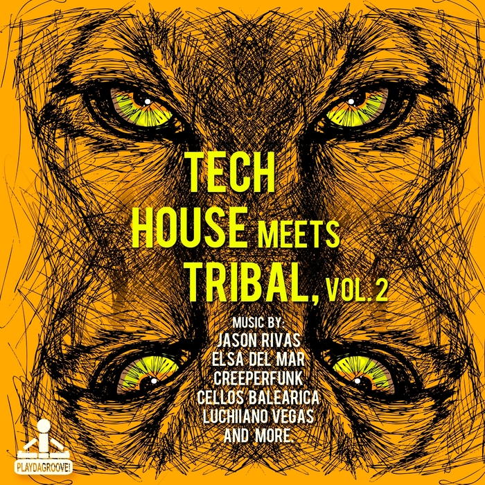 VARIOUS - Tech House Meets Tribal Vol 2