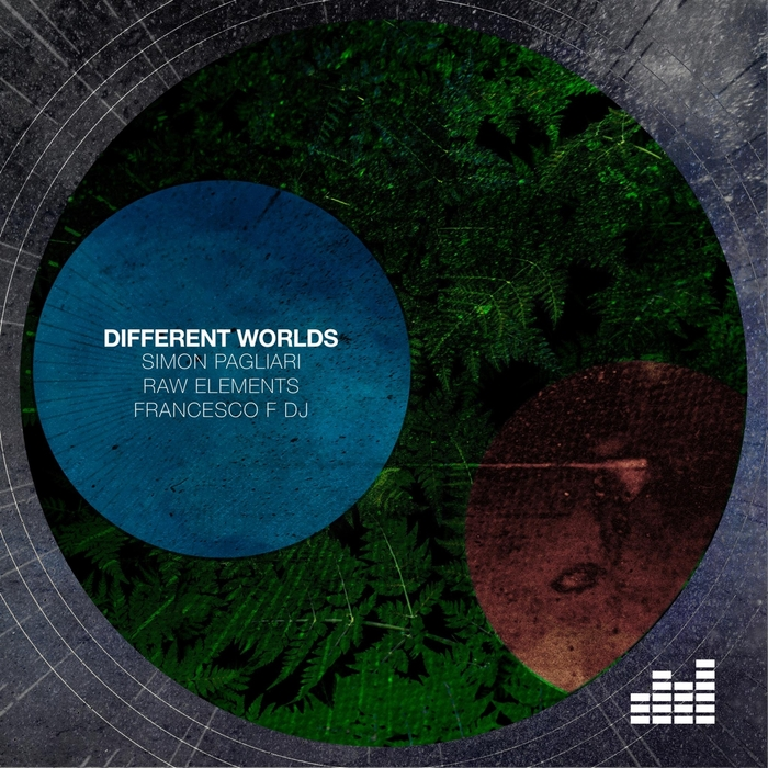 SIMON PAGLIARI/RAW ELEMENTS/FRANCESCO F DJ - Different Worlds