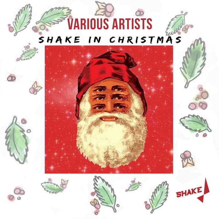 VARIOUS - Shake In Christmas