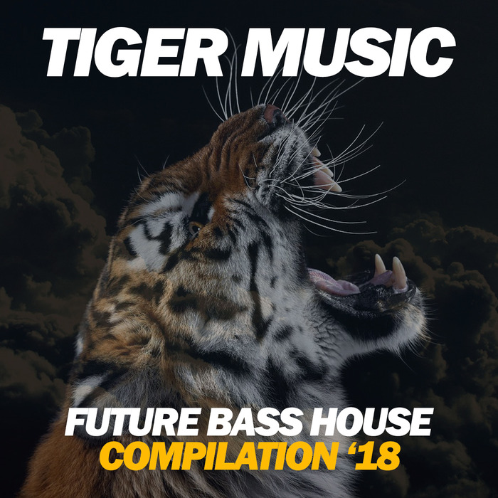 VARIOUS - Future Bass House 2018