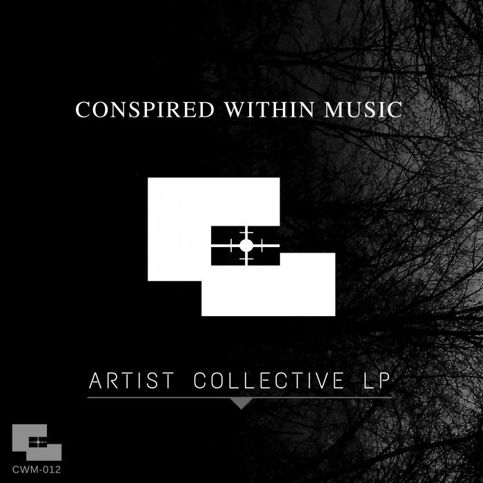 VARIOUS - Artist Collective LP