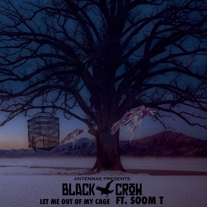 AN-TEN-NAE/BLACK CROW feat SOOM T - Let Me Out Of My Cage