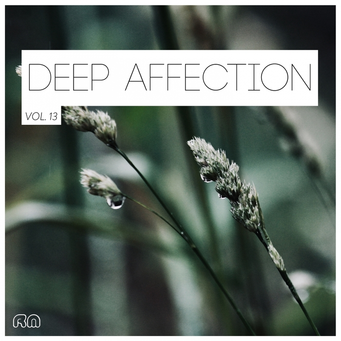 VARIOUS - Deep Affection Vol 13