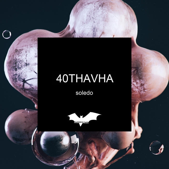 40THAVHA - Soledo