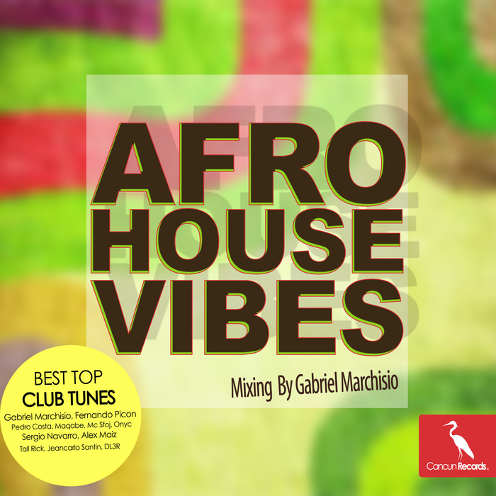 VARIOUS/GABRIEL MARCHISIO - Afro House Vibes (Mixing By Gabriel Marchisio)