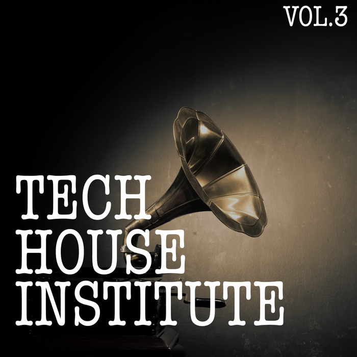 VARIOUS - Tech House Institute Vol 3