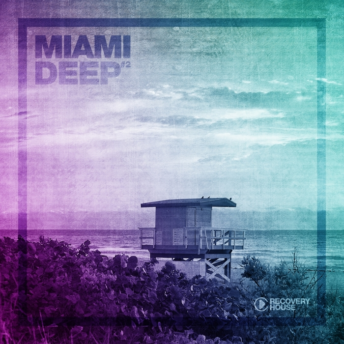 VARIOUS - Miami Deep #2