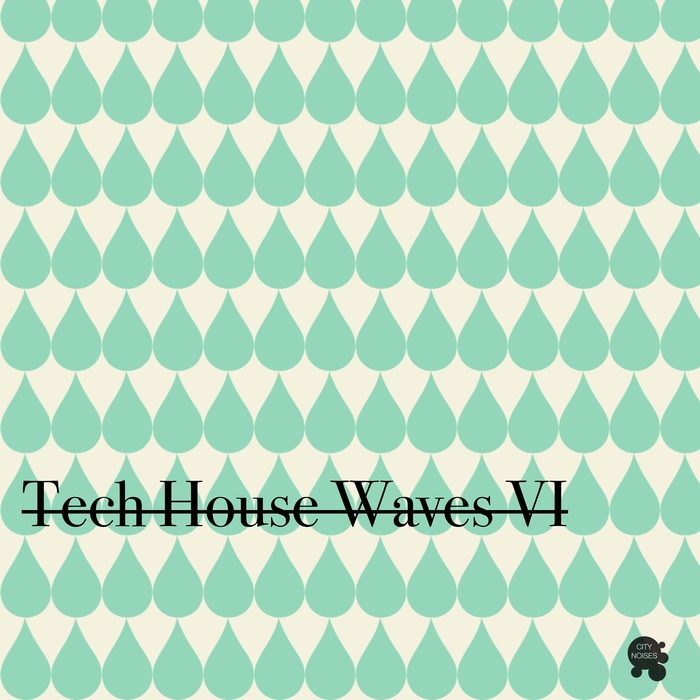 VARIOUS - Tech House Waves 6