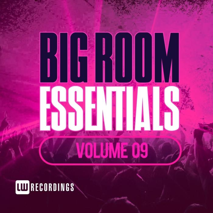 VARIOUS - Big Room Essentials Vol 09