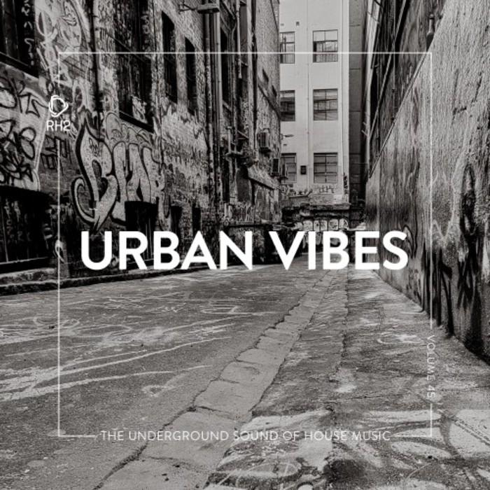 VARIOUS - Urban Vibes Vol 45