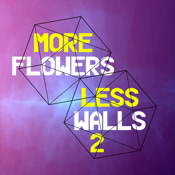 VARIOUS - More Flowers Less Walls! 2