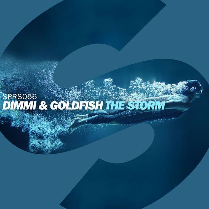 DIMMI/GOLDFISH - The Storm