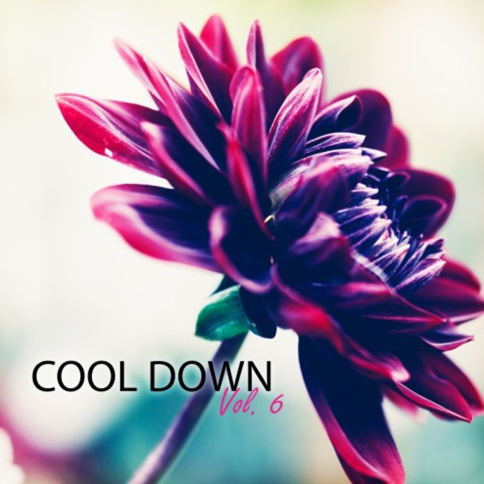 ENDLESS ALL/HEAVENLY LIGHT/LOUNGE HOURS/MANIFESTATION/THE PARENT - Cool Down Vol 6