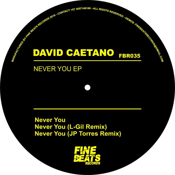 DAVID CAETANO - Never You EP