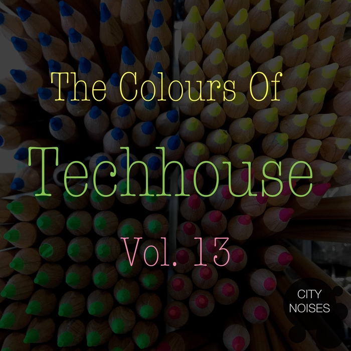 VARIOUS - The Colours Of Techhouse Vol 13