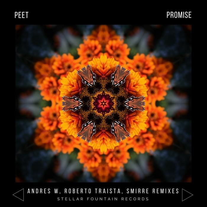 PEET - Promise