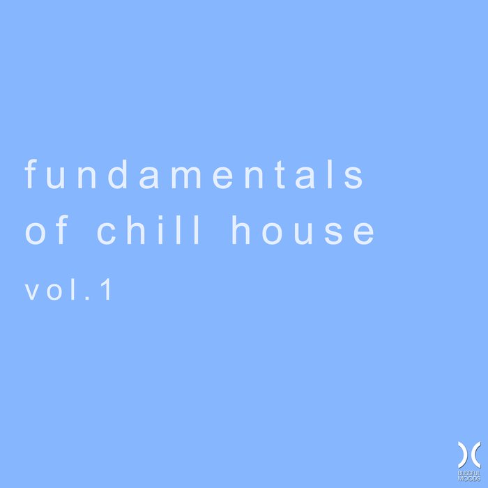 VARIOUS - Fundamentals Of Chill House Vol 1