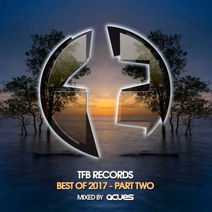 VARIOUS/ACUES - TFB Records: Best Of 2017 Pt 2