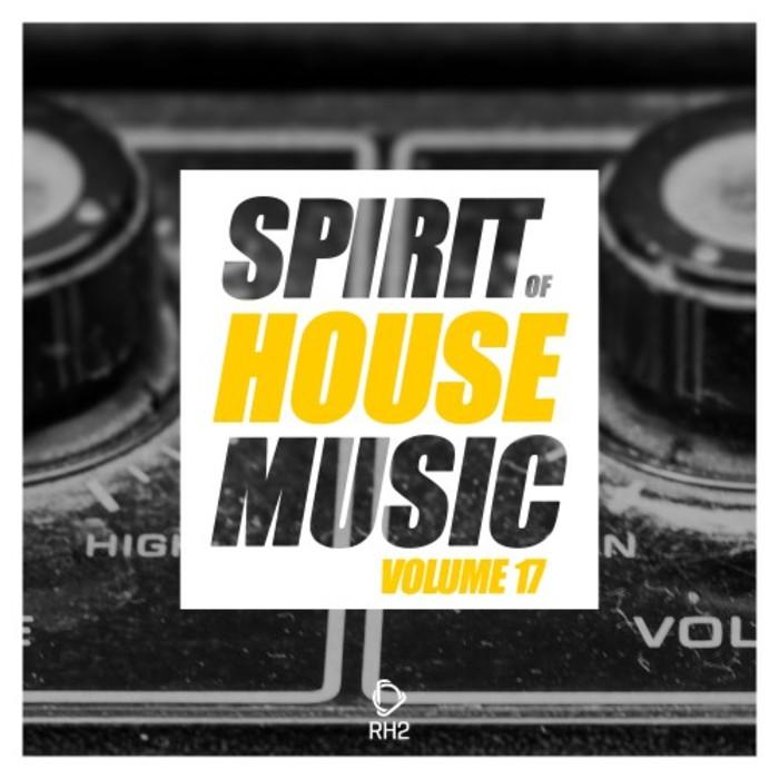 VARIOUS - Spirit Of House Music Vol 17