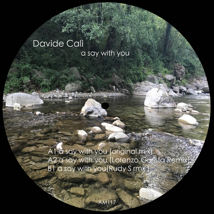 DAVIDE CALI - A Say With You