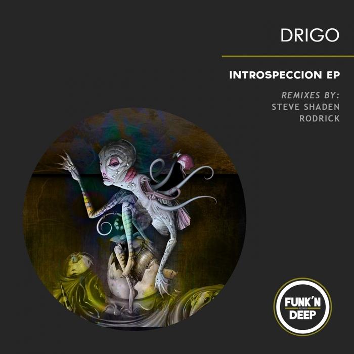 DRIGO - Introspeccion