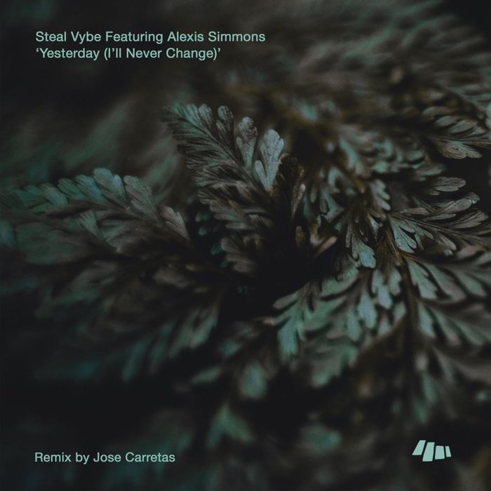 STEAL VYBE feat ALEXIS SIMMONS - Yesterday (I'll Never Change)
