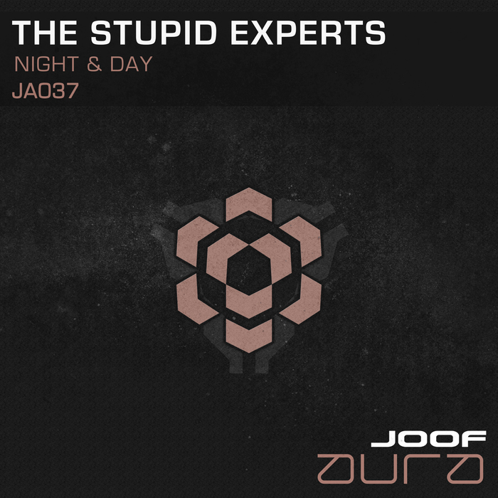 THE STUPID EXPERTS - Night & Day
