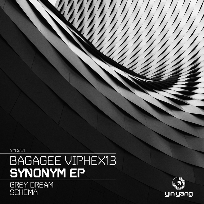 BAGAGEE VIPHEX13 - Synonym EP