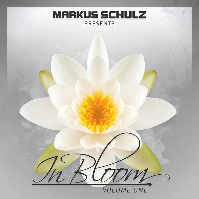 MARKUS SCHULZ - Markus Schulz Presents In Bloom EP Vol 1