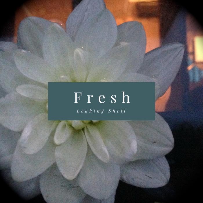LEAKING SHELL - Fresh