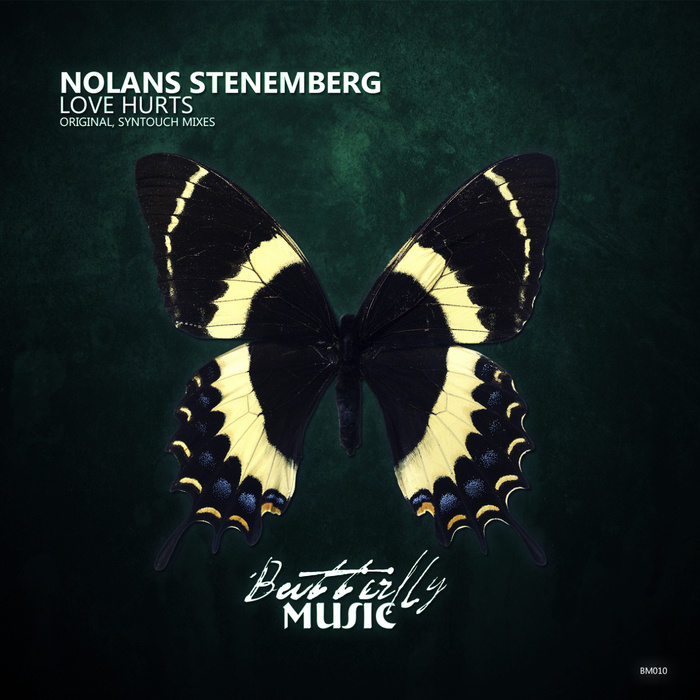 NOLANS STENEMBERG - Love Hurts